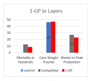 1-GPN Poultry Layers Image