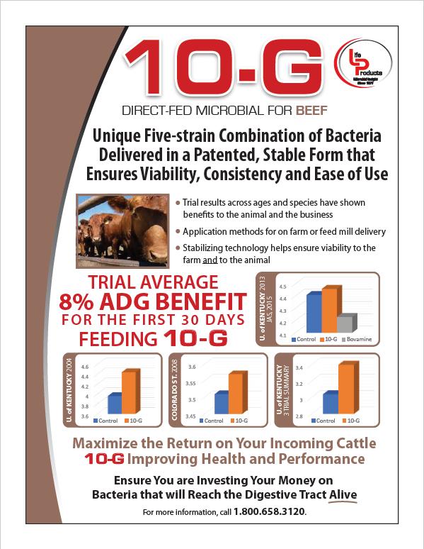 10-G Beef Tech Sheet